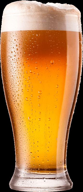 Was ist Bier - Export - Überblick