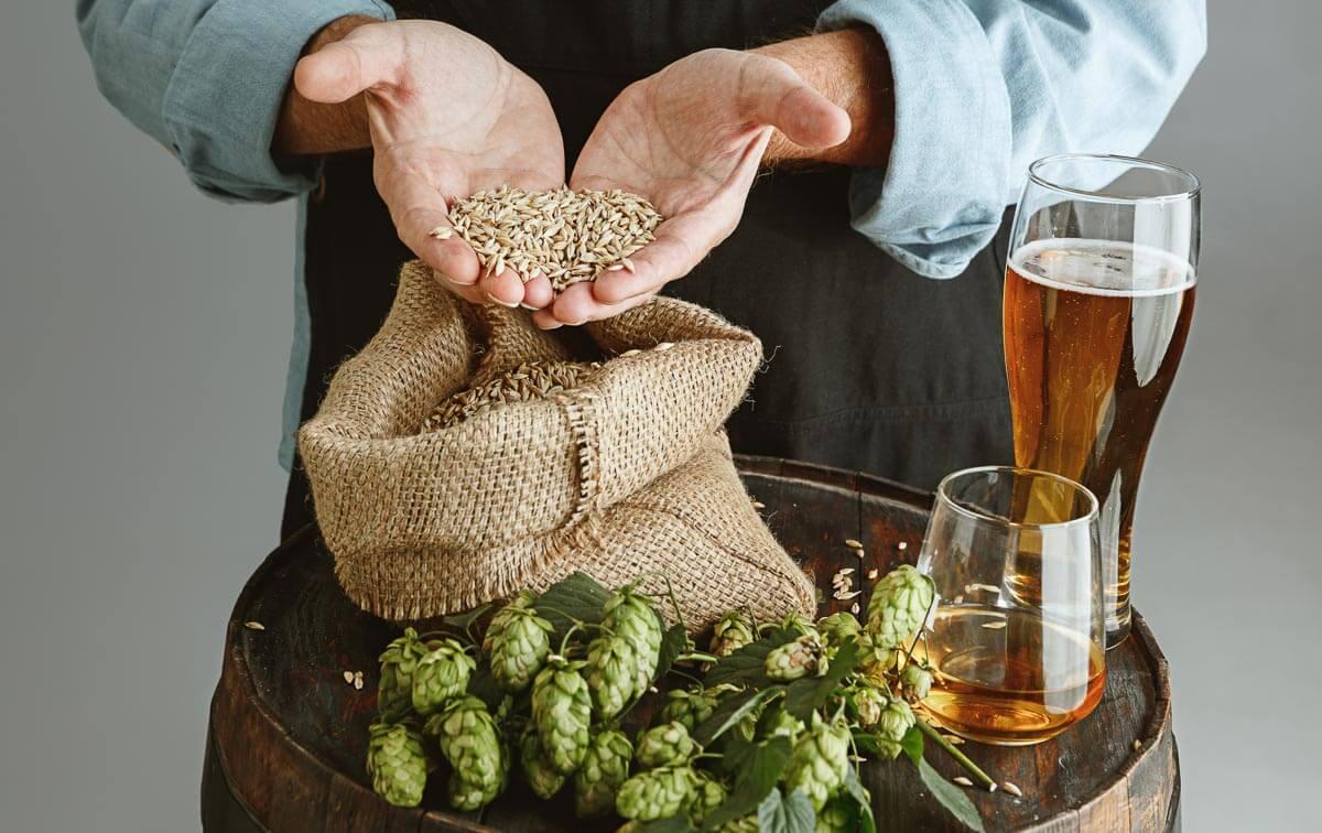 Hopfen, Malz, Hefe und Wasser bilden die Grundlage aller Biere