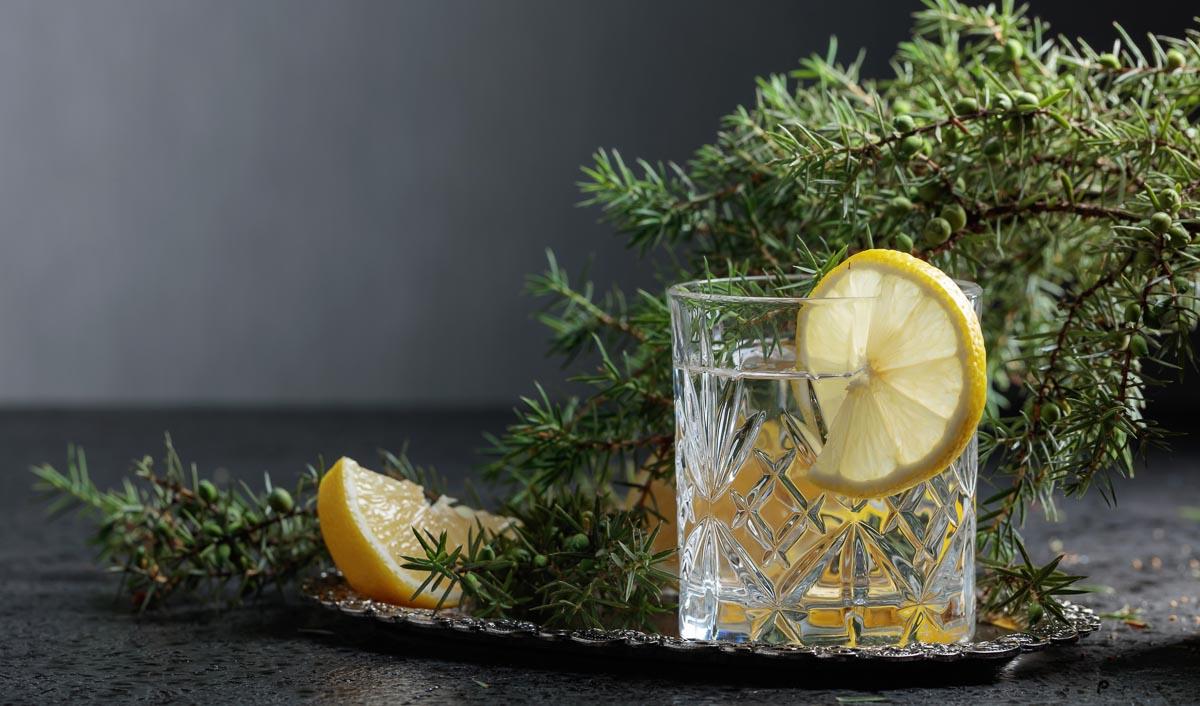 Der Gin Tonic ist der Klassiker unter den Gin-Getränken.
