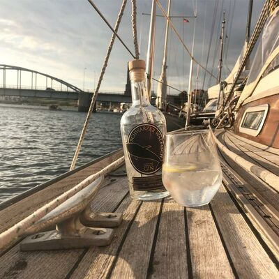 Schwarzer Walfisch Gin Beauty Shot