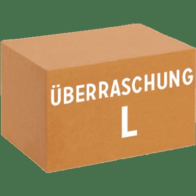 Überraschungskarton L (24 x 0,33 l verschiedene Craft Biere)