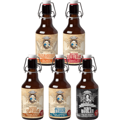 Lust voller Hopfen - 12x Craft Beer von der Braumanufaktur Ludwigslust (Pils + Weizen + Schwarzbier + IPA + Doppelbock)